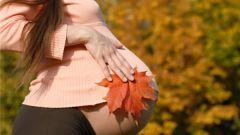 Как подобрать беременной гардероб