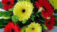 Как научиться составлять букеты из цветов