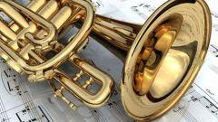 Чем отличаются духовые инструменты