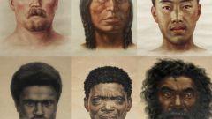 На какие расы делят людей