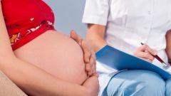 Какие виды осмотра показаны при беременности