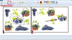 How to cut the object in Paint