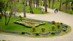 Парки города Краснодар