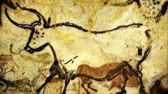 Как жил человек в каменном веке
