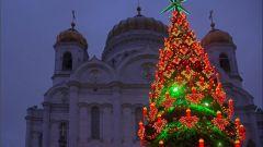 Где была установлена самая высокая новогодняя елка