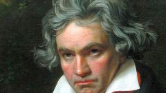 Где и когда родился Л.В. Бетховен