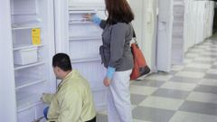 Какой лучше купить холодильник