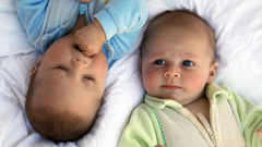 Как выплачивают материнский капитал за близнецов