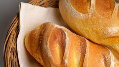 Как выбрать дрожжи для хлебопечки