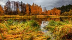Где можно отдохнуть в ноябре в России