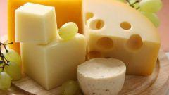 Какие бывают сыры жирностью 5%