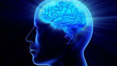 Народные средства, помогающие восстановить работу мозга после инсульта