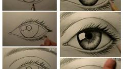 How to learn to draw well with a pencil