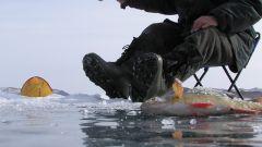 Как выбрать сапоги для зимней рыбалки