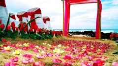 Сценарий свадьбы в гавайском стиле