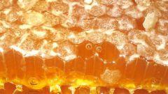 Можно ли есть мёд в сотах вместе с воском