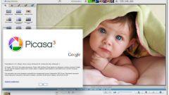 Как работать с изображениями в Picasa