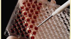 Как читать анализ крови