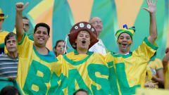 ЧМ 2014 по футболу: как проходил матч Камерун - Бразилия