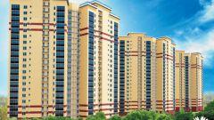 Как оформить права на недвижимость