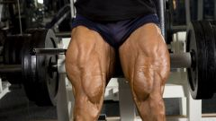 Как называются все мышцы ног