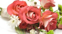 Какие цветы лучше всего дарить