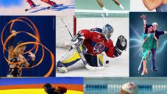 Какие есть виды спорта