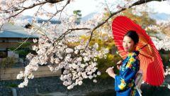 Как извиняются по-японски
