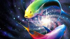What Zodiac sign fits the female Fish