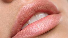 Как выглядит рак губы