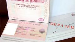 How to apply for registration of the international passport