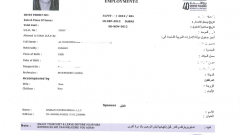 Как выглядит виза в ОАЭ, как ее получить