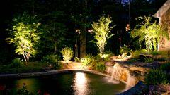 Садовое освещение: как подсветить дорожки, растения и водоемы