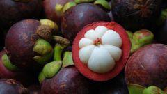 Что такое мангостан