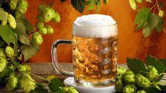 Как приготовить пиво самому