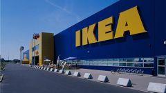 История компании Икеа: как все начиналось
