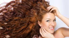 Как хна влияет на волосы
