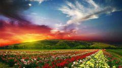 Где в мире самая красивая природа