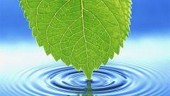 Вода как источник жизни на Земле
