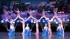 Китайский цирк: традиции и особенности