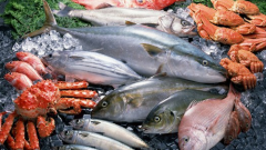 Which fish contains the most iodine