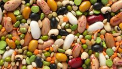 Which plant foods have the most protein