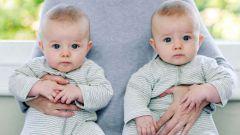Как забеременеть, чтобы родилась двойня