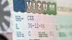 Какие документы необходимы для получения визы в Чехию