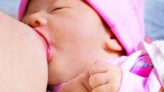 Как установить режим ребенку при грудном вскармливании по требованию