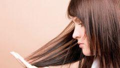 Какова ежедневная норма выпадения волос