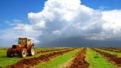 Факторы развития сельского хозяйства