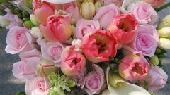 Какие цветы нравятся девушкам