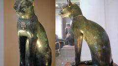 Какие животные считаются священными у Египтян