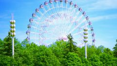Какое колесо обозрения в Москве самое высокое